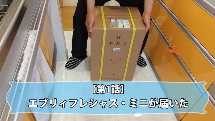 【第1話】エブリィフレシャス・ミニが届いた